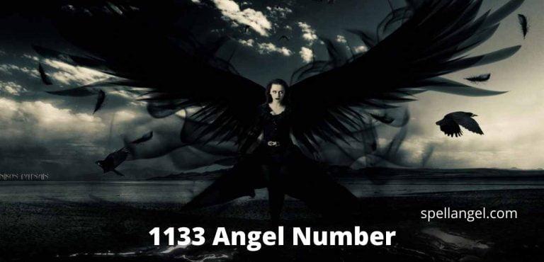 1133 angel number