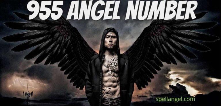 955 angel number